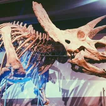My pal Dino.